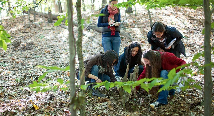 Students explore artifacts during and outside class for Adam Van Arsdale's forensic anthropology class